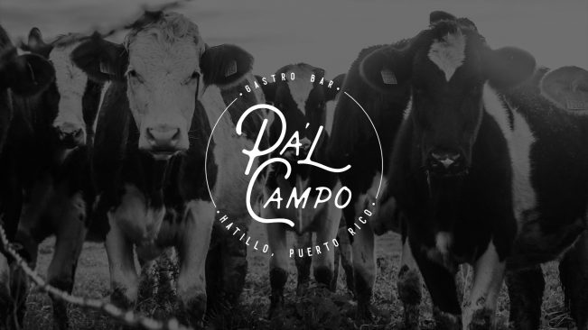 Pa'l Campo Branding